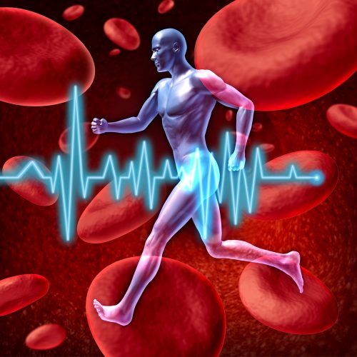 Human cardiovascular circulation represented by a running human with a background of red blood cells flowing through an artery showing the concept of the medica